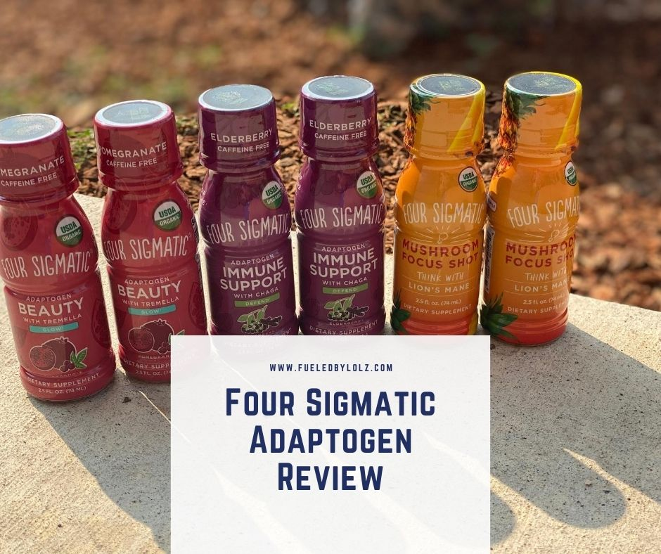 Four Sigmatic Adaptogen Review